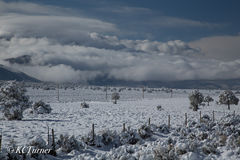 Taos, New Mexico, snow storm, mother nature, white out, pastoral, landscape, photograph
