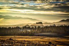 north South Park, Colorado, mist, landscapes, golden, expressionistic, tone, photographed