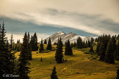 Mountain Meadow Walk