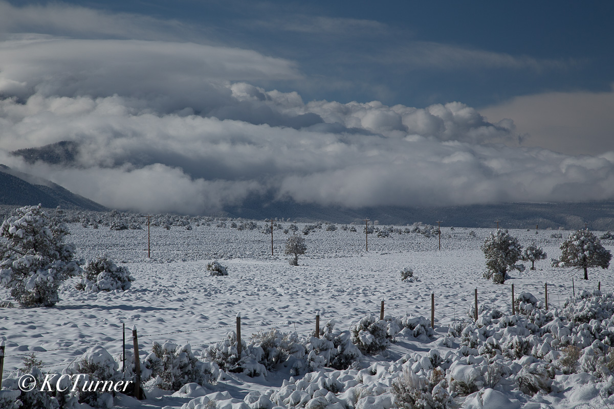 Taos, New Mexico, snow storm, mother nature, white out, pastoral, landscape, photograph, photo
