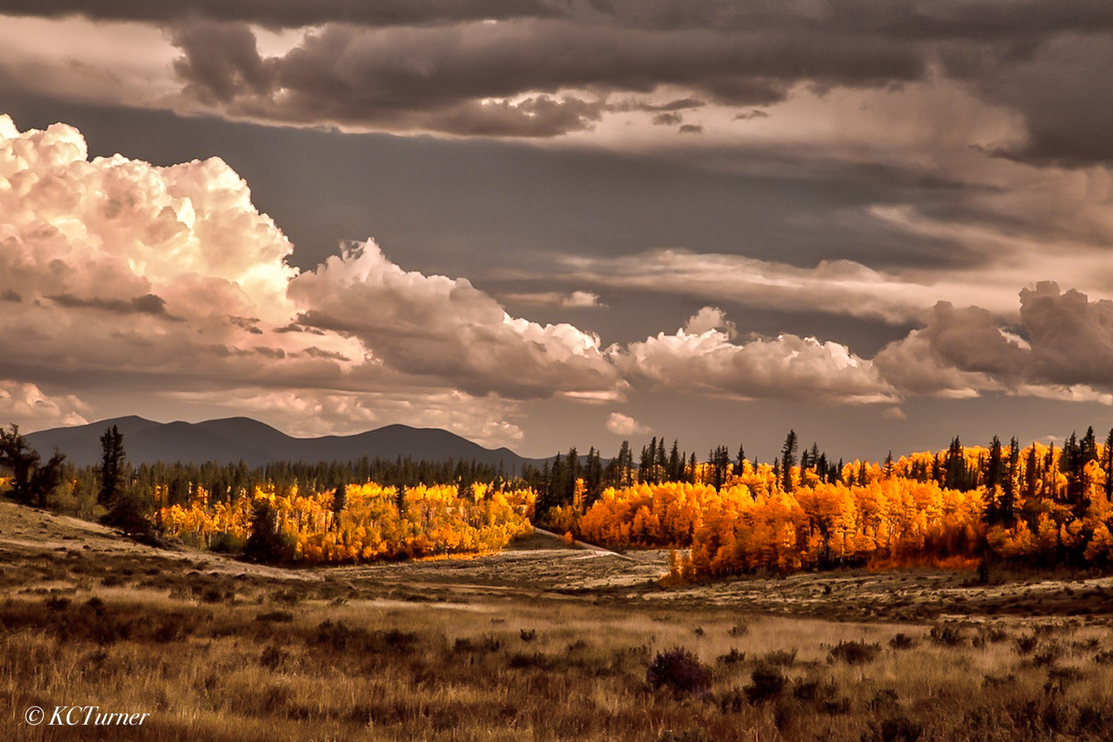 Colorado, pike national forest, lost creek wilderness, landscape, photo, photo